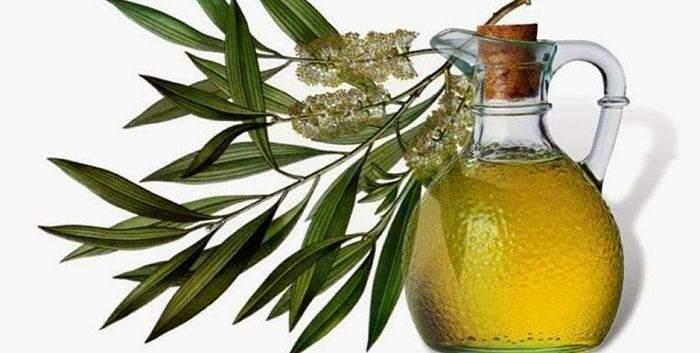 La Anmat prohibió un aceite de oliva y extendió la prohibición sobre una pulpa de tomate ilegal