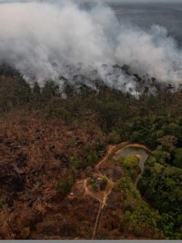 Resultado de imagen para Bolivia participará en la cumbre de preservación de la Amazonia en Colombia